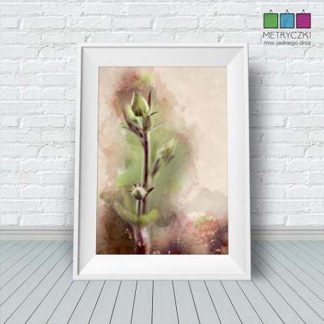 Kwiaty ogrodowe - pąki - akwarele - zielony